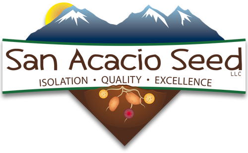 San Acacio Seed: Isolation - Quality - Excellence